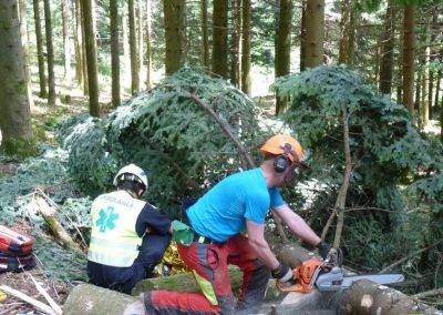 Un forestier-bûcheron exécute les travaux préparatoires en vue de l'évacuation