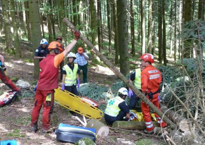 Les forestiers-bûcherons donnent un coup de main pour dégager le blessé